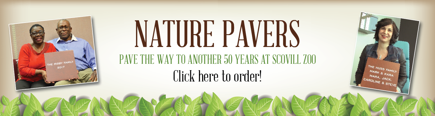 Nature Pavers