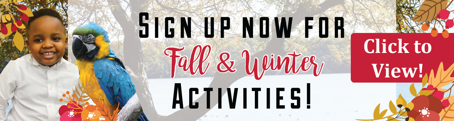 Fall & Winter Activity Guide