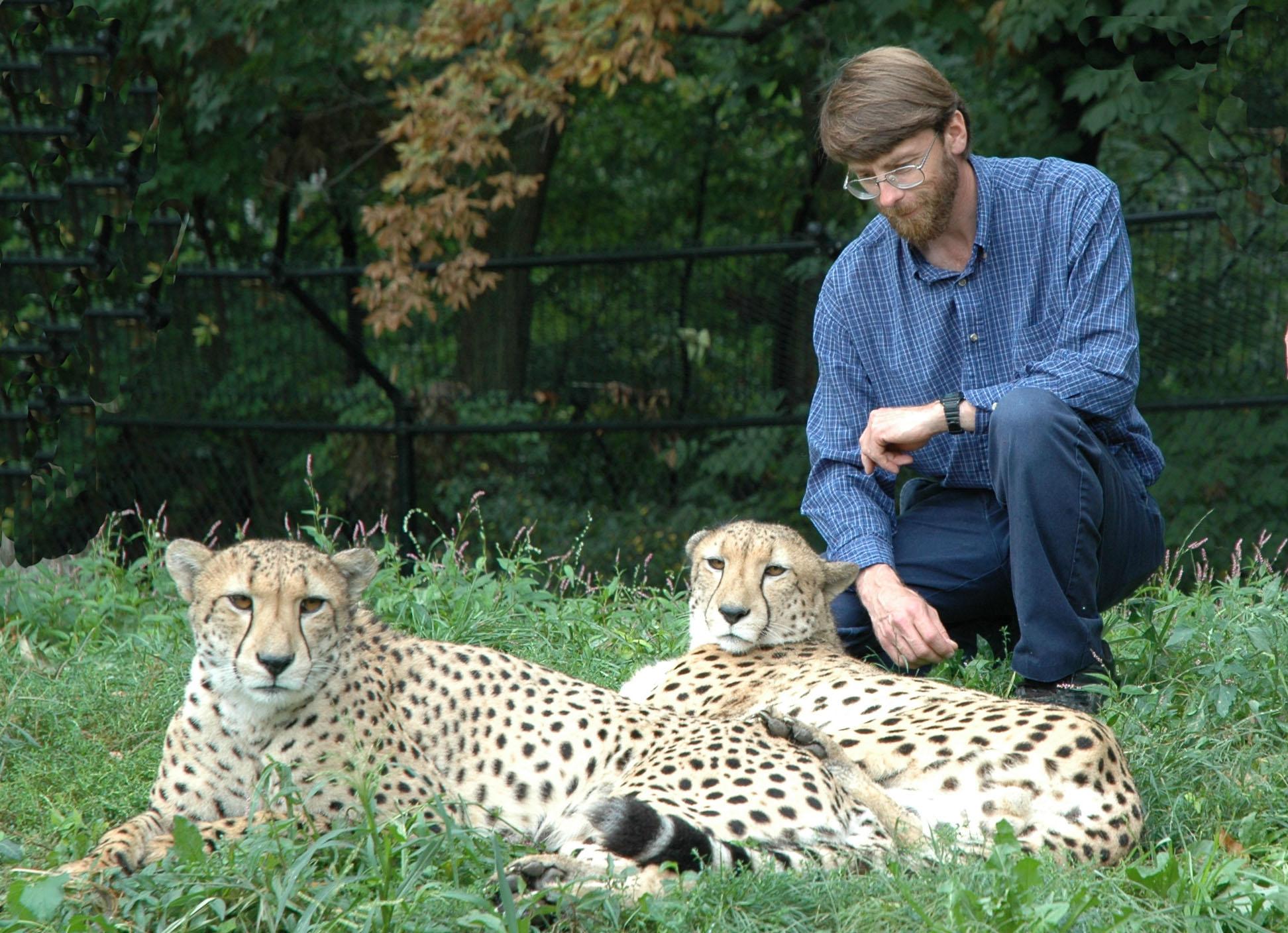 Dave-and-Cheetahs