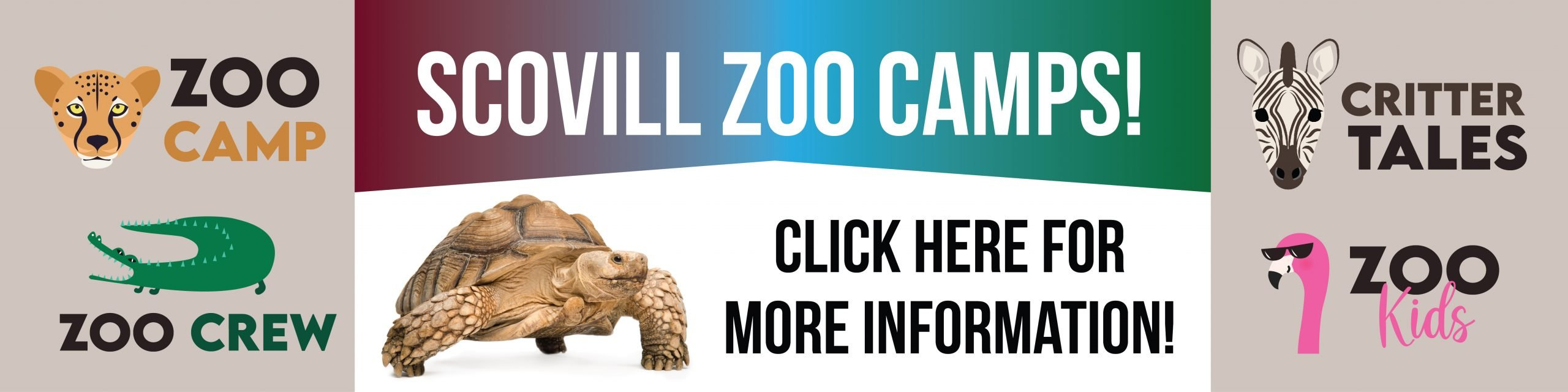 ZooCamps_WebBanner-01