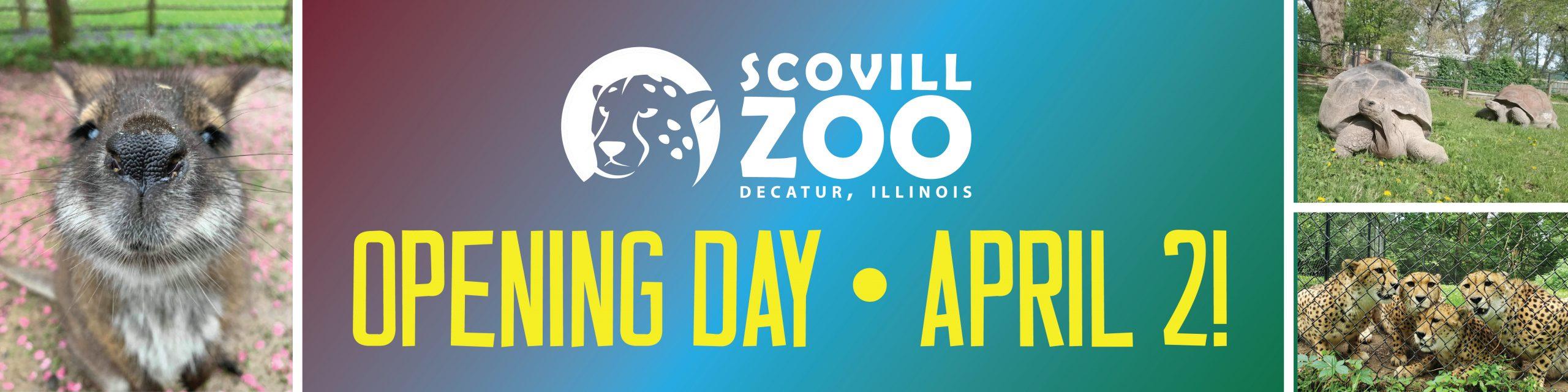 ZooOpen_Web-Banner_2021-01-01