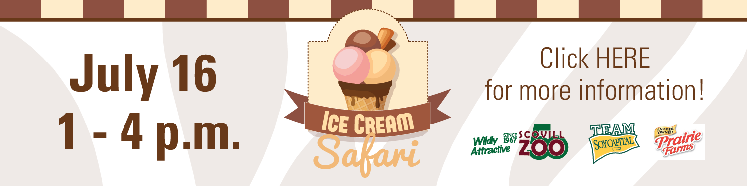 Scovill Zoo's Ice Cream Safari